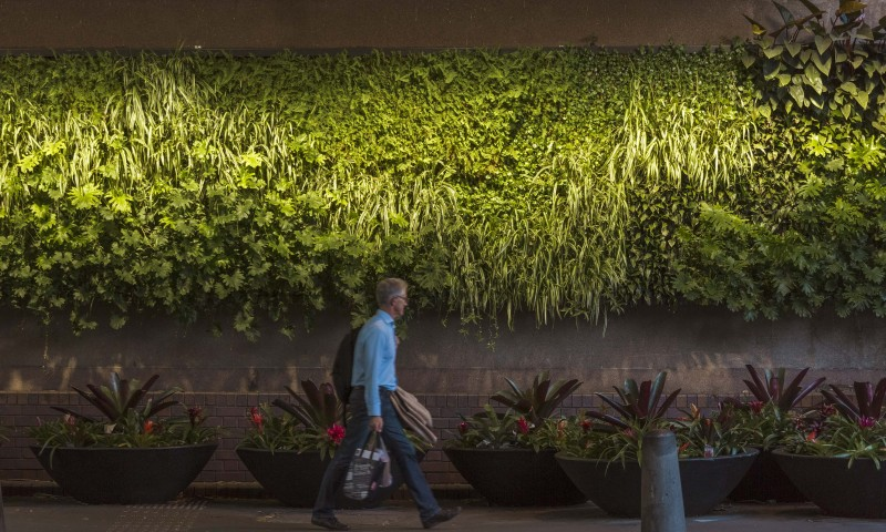green wall lighting. Greenwall Lighting Design By Electrolight Green Wall